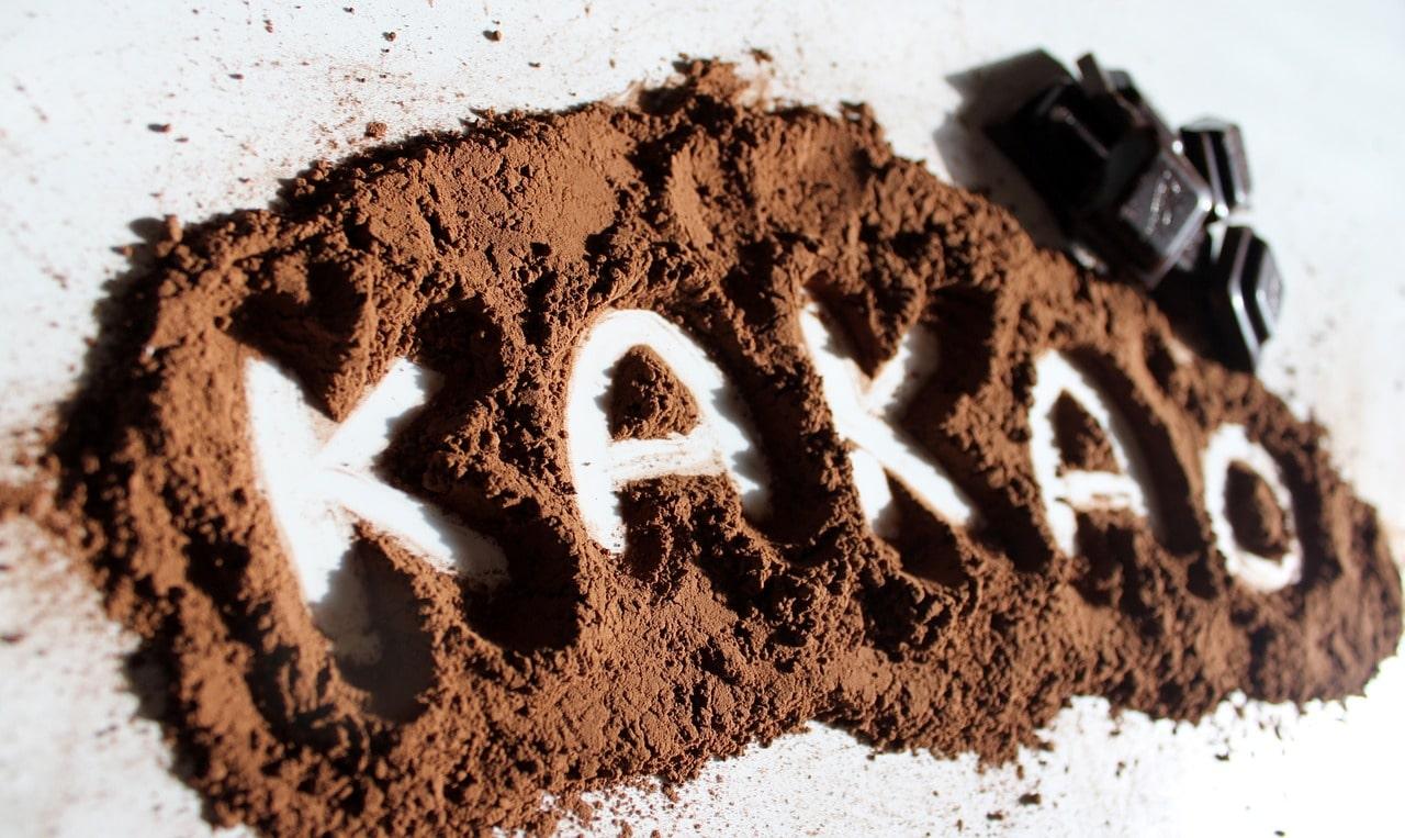 roh-veganer-kuchen schoko kakao