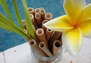 Einwegplastik Verbot Bambus Strohhalme Nachhaltig und Plastikfrei