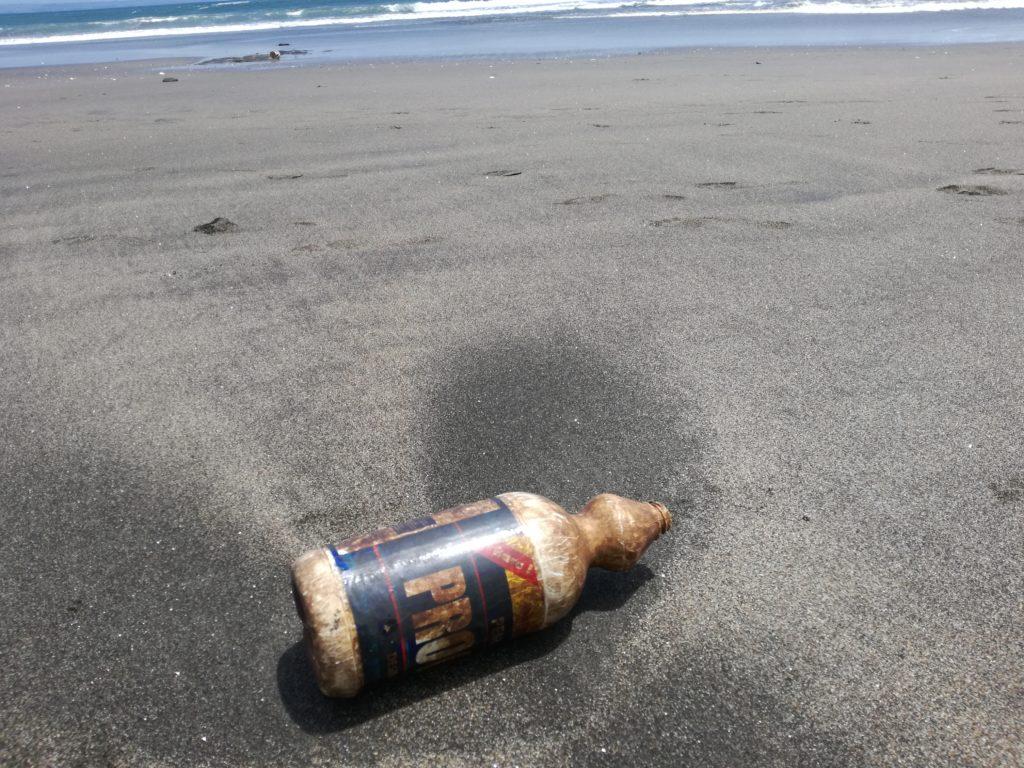 Einwegplastik Verbot Costa Rica Plastikflasche Strand Meer