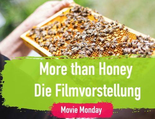 More than Honey – Die Filmvorstellung am Movie Monday