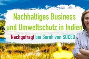 Umweltschutz in Indien & Nachhaltiges Business – geht das? Nachgefragt