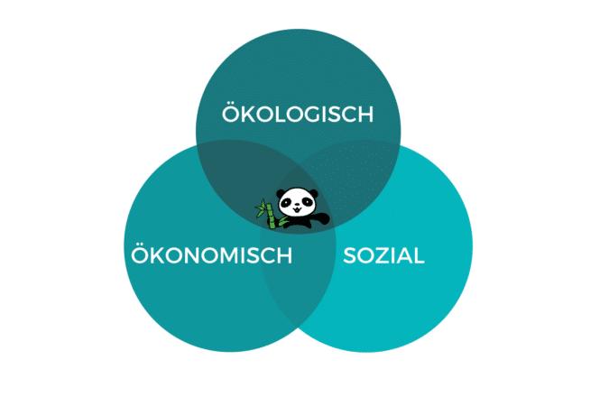 Nachhaltigkeit - 3 Säulen Modell - Ökologisch Ökonomisch Sozial EcoYou