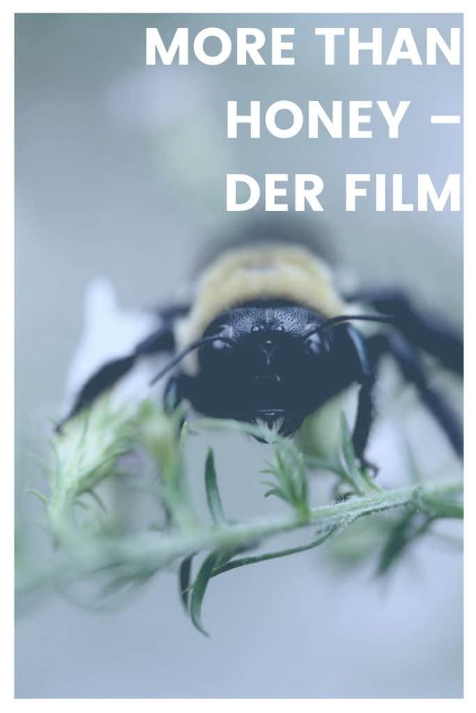 More than Honey - der Film. Lohnt sich der Film? Hier erfährst du es.