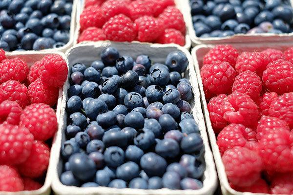 Unverpackt Einkaufen – Frische Beeren in nachhaltiger Verpackung – Einkaufen im Hofladen – Leben ohne Plastik EcoYou Tipps