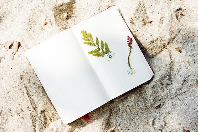 Geschenke für Reisende - Reisetagebuch für Unterwegs Urlaub Reise Gadget Geschenk für reisende Freundin Weltreise Backpacker Traumurlaub