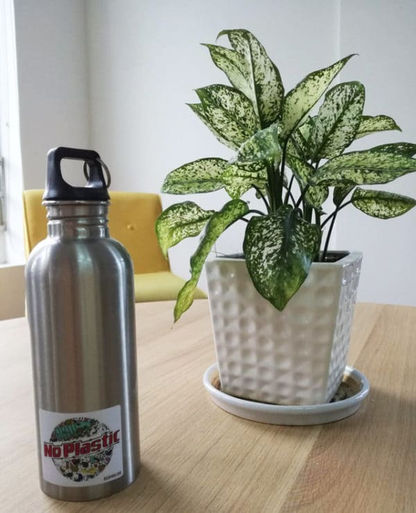 nachhaltige Trinkflaschen edelstahl bpa-frei trinkflasche ecoyou