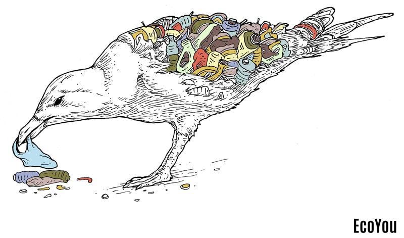 Mikroplastik Gefahr Tier Mensch Umwelt plastikfrei leben ohne Plastik EcoYou Blog Definition Kunststoff