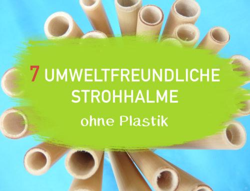 7 Umweltfreundliche Strohhalme ohne Plastik – Top aus 2018 I EcoYou