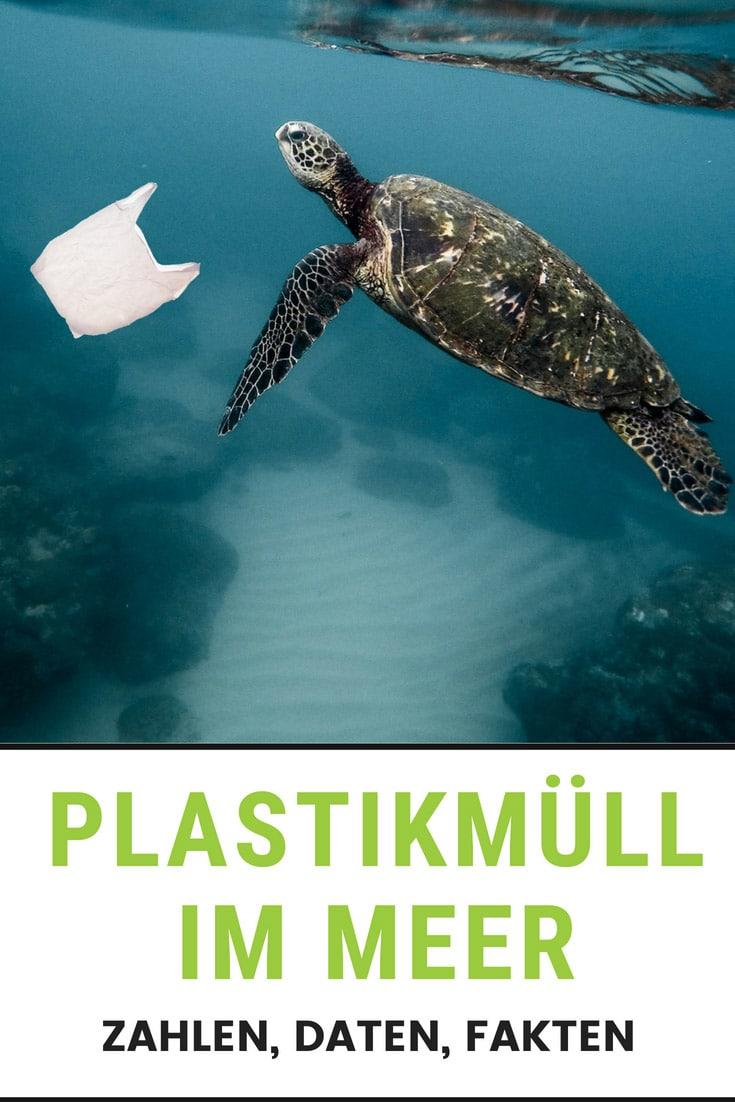 Plastikmüll im Meer Ozean Folgen Lösungen Zero Waste EcoYou Weltmeere Müll plastik Plastikfrei Leben ohne Plastik