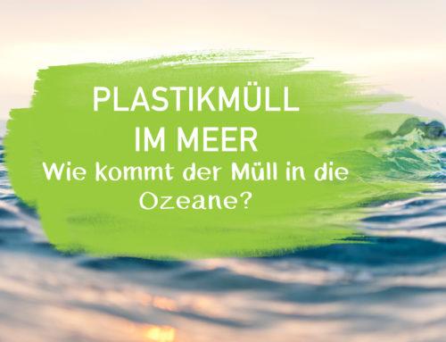 Plastikmüll im Meer – Wie kommt der Müll in die Ozeane?