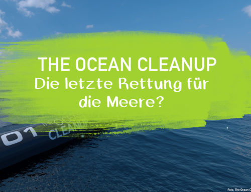 The Ocean Cleanup – die letzte Rettung für die Meere?