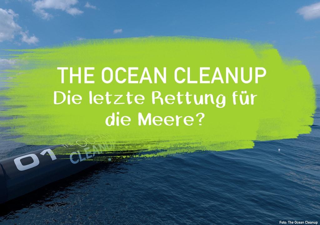 The Ocean Cleanup möchte die Meere Plastik befreien plastikfreie Meere Mikroplastik Gefahr für Mensch und Tier Seepferdchen Ohrenstäbchen EcoYou Blog Tipps