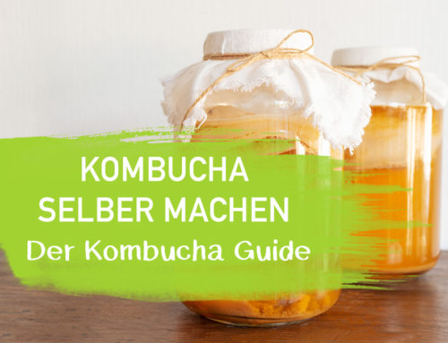Kombucha selber machen – Der Kombucha Guide INKL. Anleitung