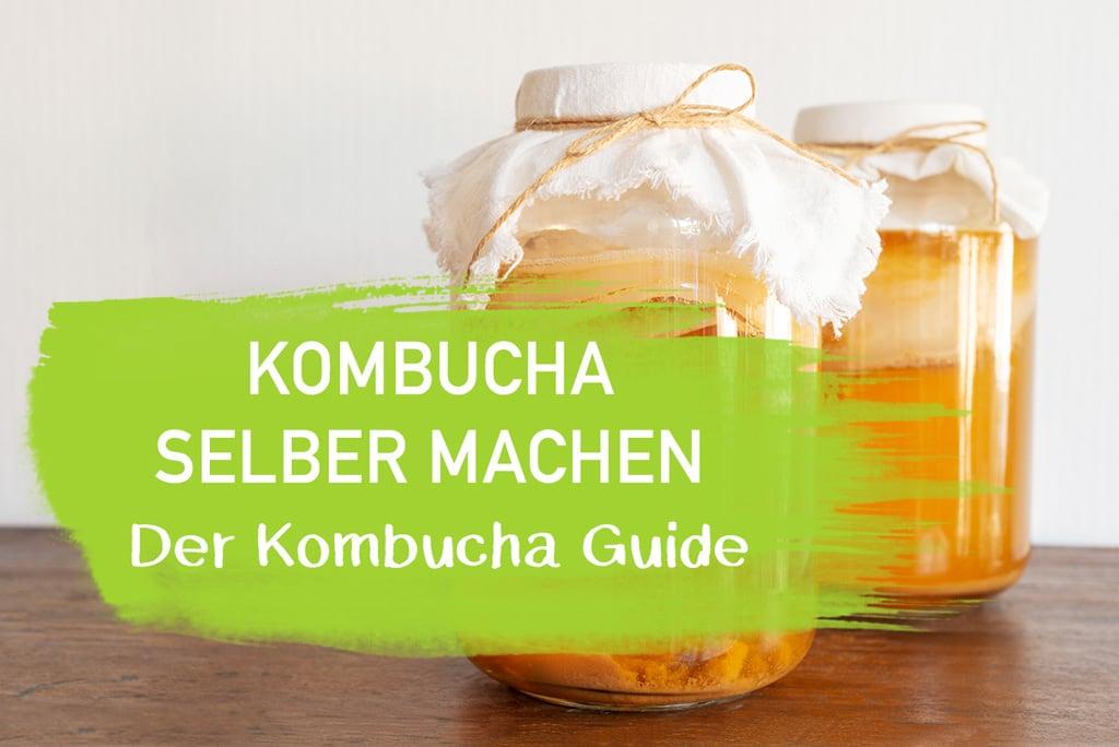 Kombucha selber machen Anleitung Wirkung Guide Erfahrung Erfahrungsbericht EcoYou Blog Tipps Tricks