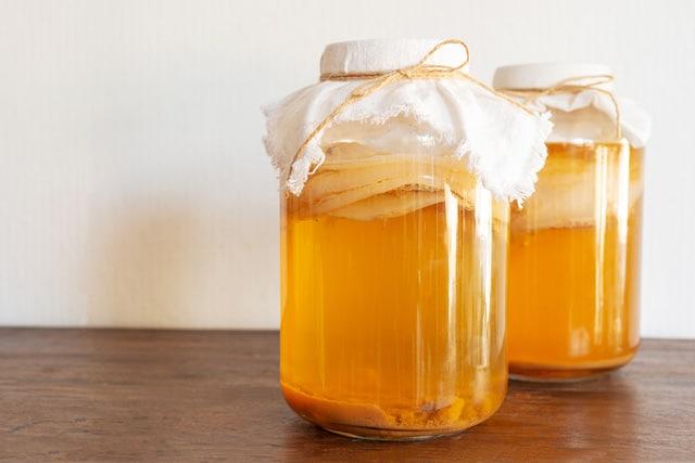 Kombucha selber machen Rezept Pilz kaufen Scoby Pilz züchten ohne ansatzflüssigkeit EcoYou Vegan Gesund Vegetarisch