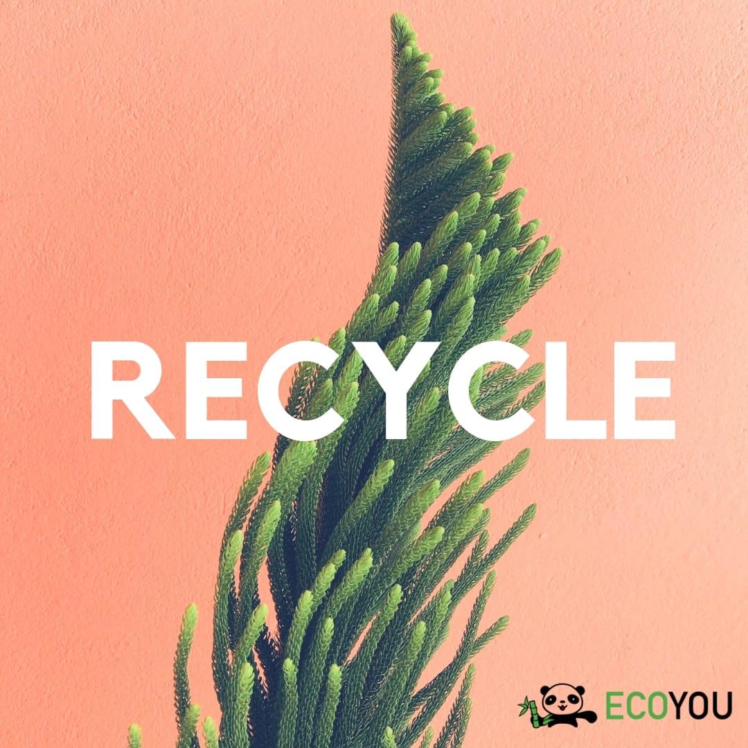 Refuse Ablehnen Zero Waste R Reduce Rethink Recycle Plastikfrei Leben ohne Plastik EcoYou Tipps Blog
