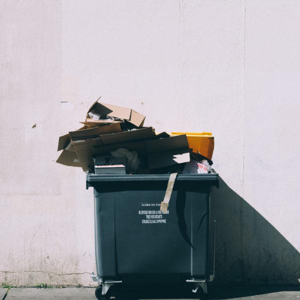 Müllvermeiden weniger Müll produzieren - Richtig Müll trennen Mülltonne